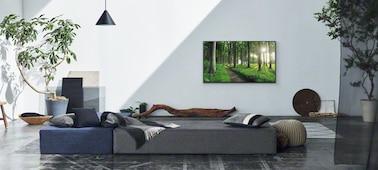 Imagen de una sala de estar que muestra el concepto de decoración para el hogar