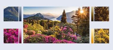 Imágenes de flores de montaña ultradetalladas con Object-based HDR remaster