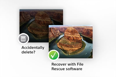 Software descargable File Rescue