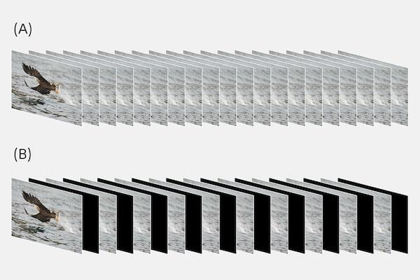 Secuencias de imágenes con y sin espacios negros